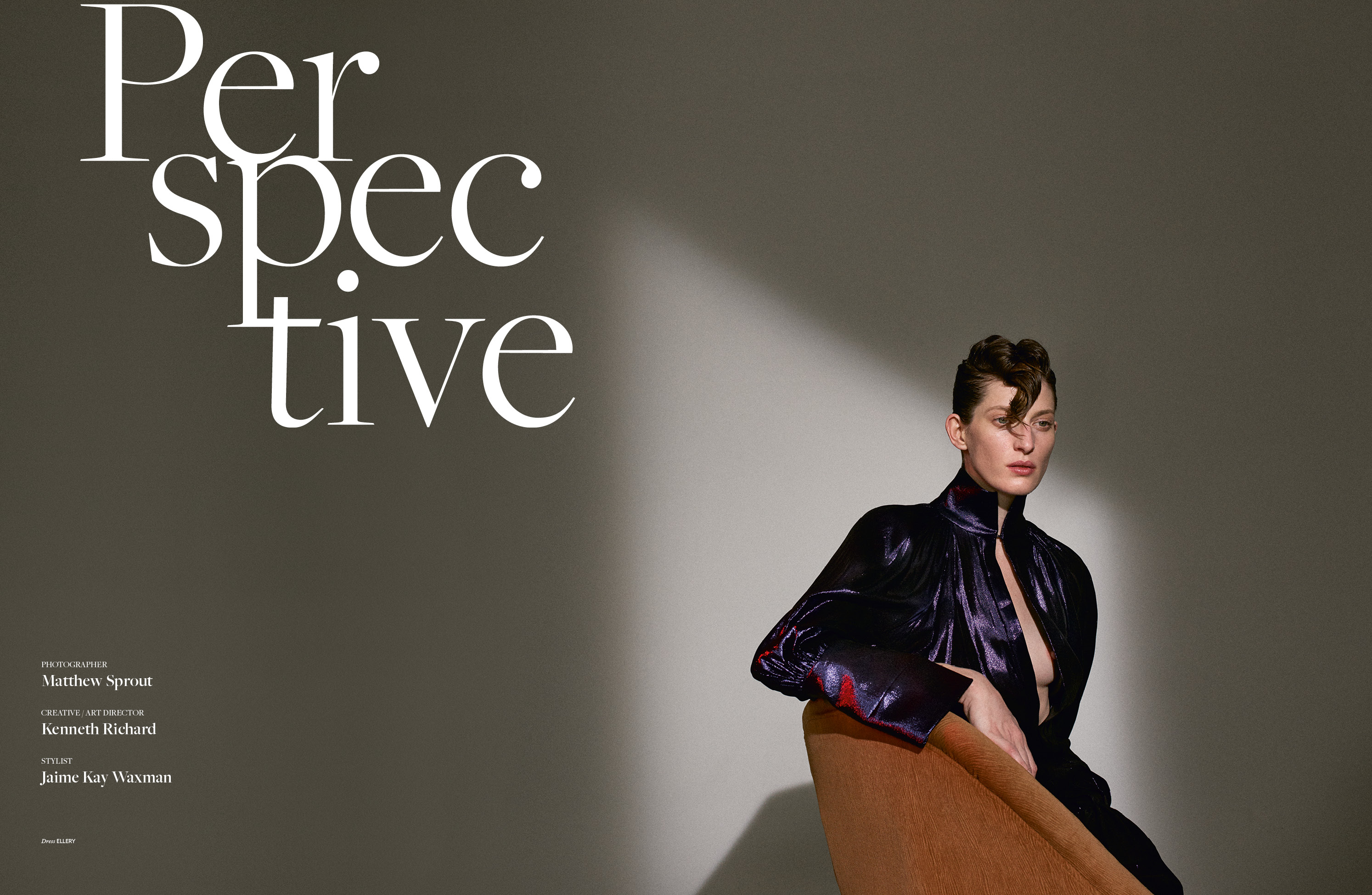 Perspective - Matthew Sprout, Jaime Kay Waxman, Kenneth Richard