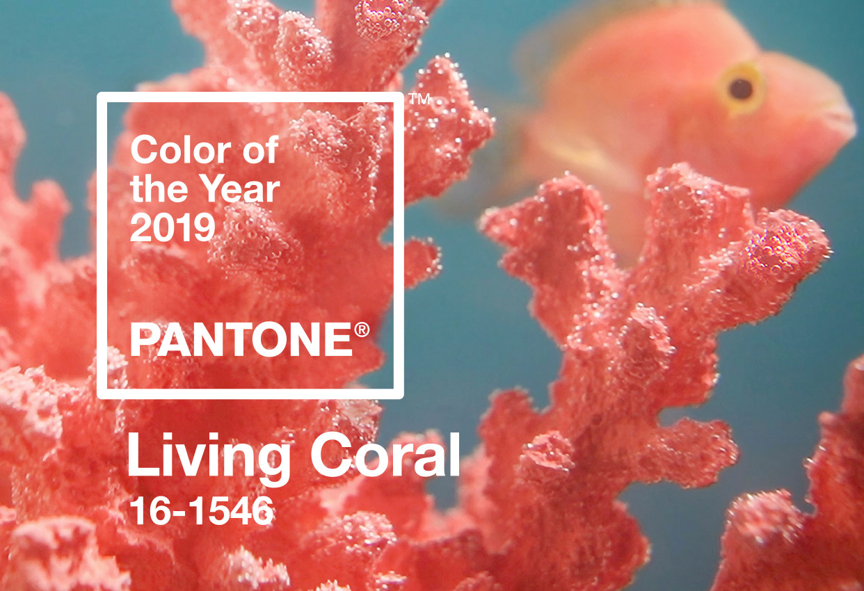 Living Coral Fashion Trend 2019