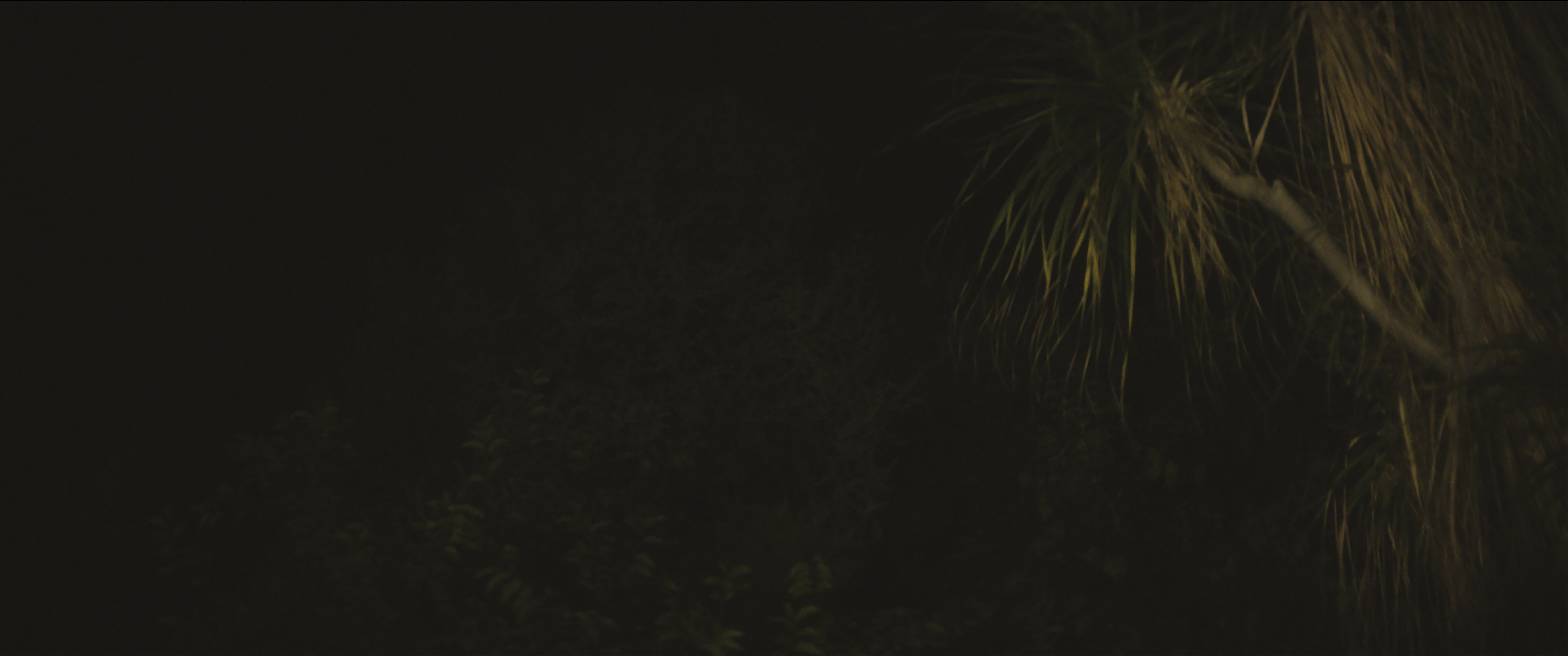 Saint Laurent Introduces Self03 Film by Bret Easton Ellis