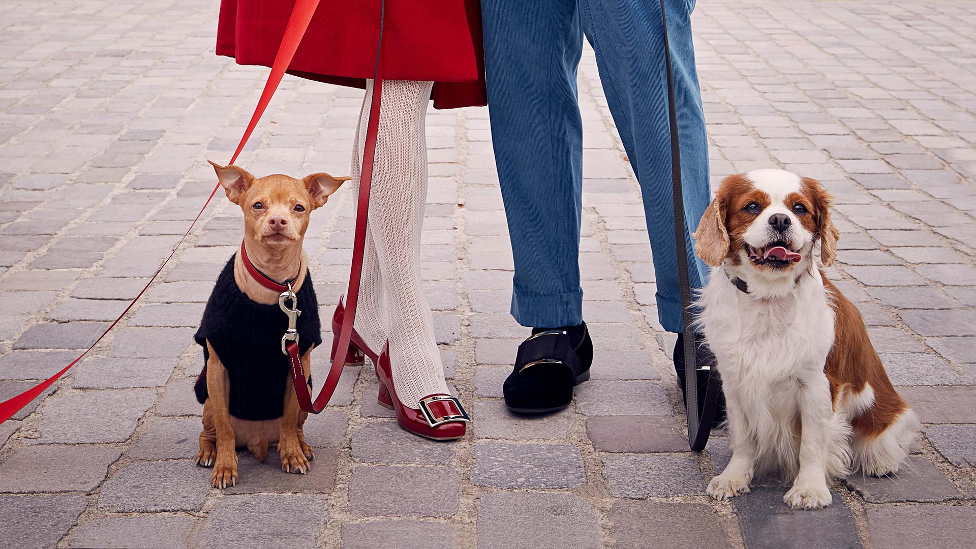Roger Vivier 'I Woof You' Holiday 2019 Ad Campaign