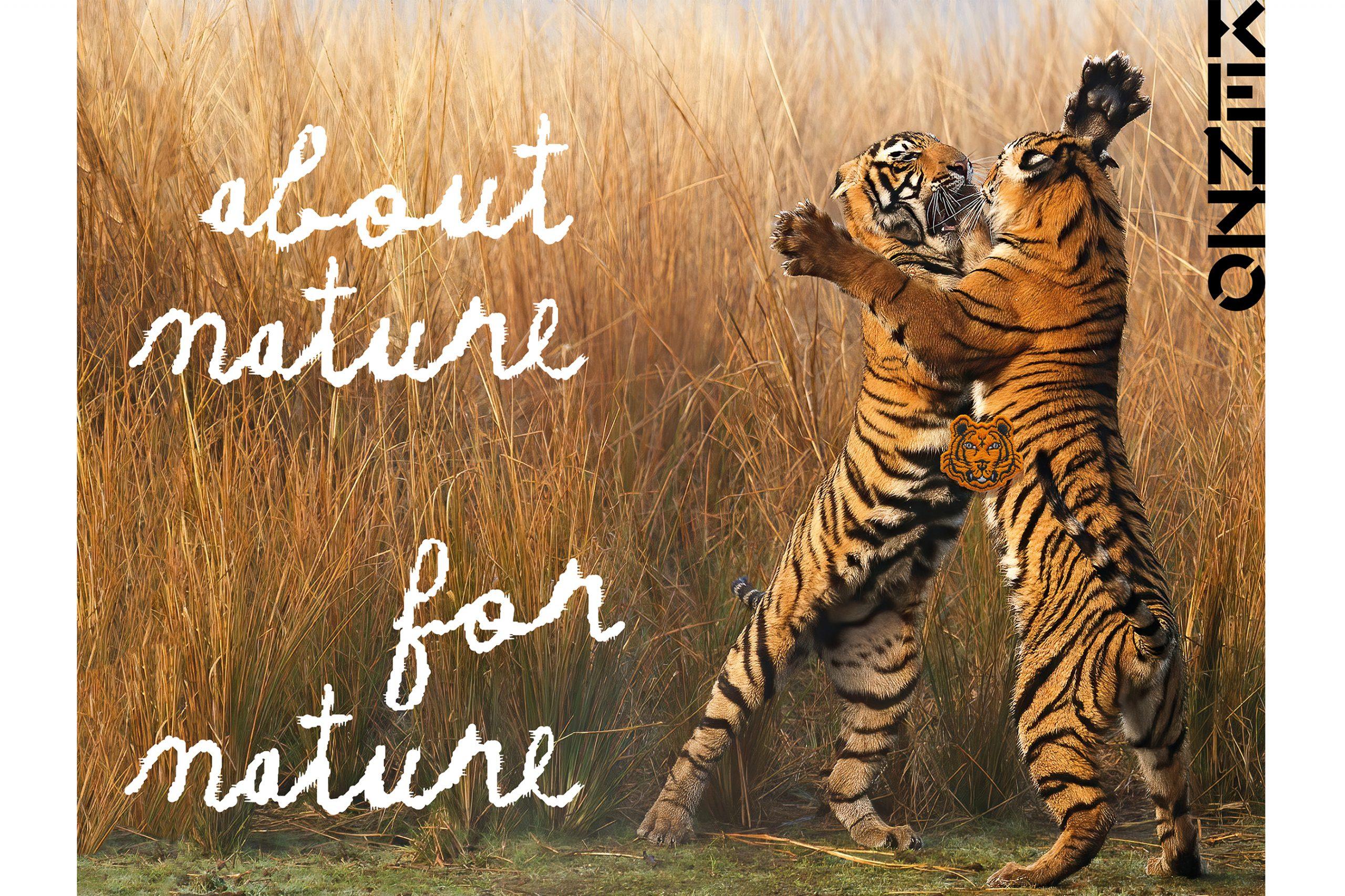 Kenzo WWF photos