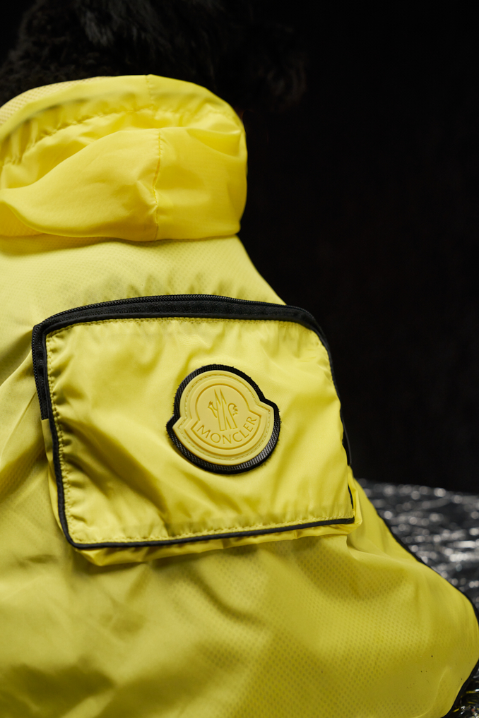 Moncler Launches 'Poldo Dog Couture' Collection