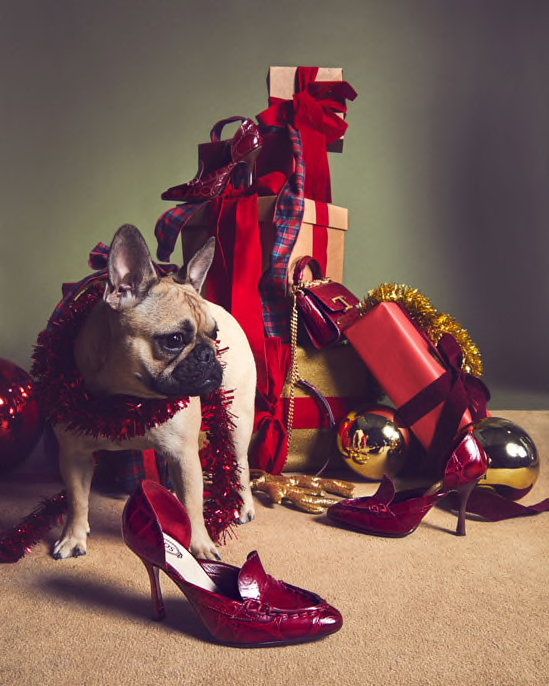 Tod's Holiday 2020 Ad Campaign Film & Photos