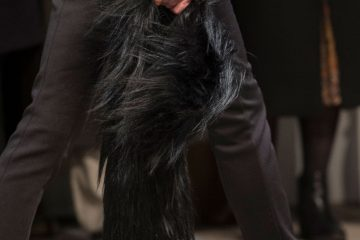 Creatures of the Wind Fall 2017 Fashion Show Details