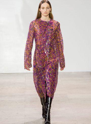 Ellery Fall 2017 Fashion Show